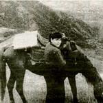 На снимке: Т. Аристова во время научной экпедиции в 1957