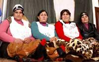Каждый десятый курд, поселившийся в Красногвардейском районе, не имеет гражданства