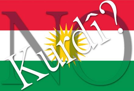 Мулла: «Ваши дети должны изучать арабский вместо курдского»