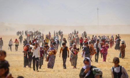 Тысячи езидов были спасены курдскими силами, когда они пытались бежать от Исламского государства в 2014 году. (Фото Emrah Yorulmaz/Anadolu Agency/Getty Images)