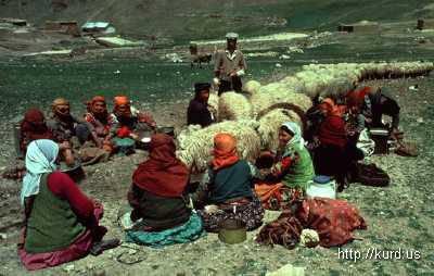 Езиды Армении.