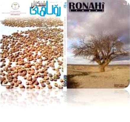 Ронаи Шангали – рассчитан не только на езидского читателя
